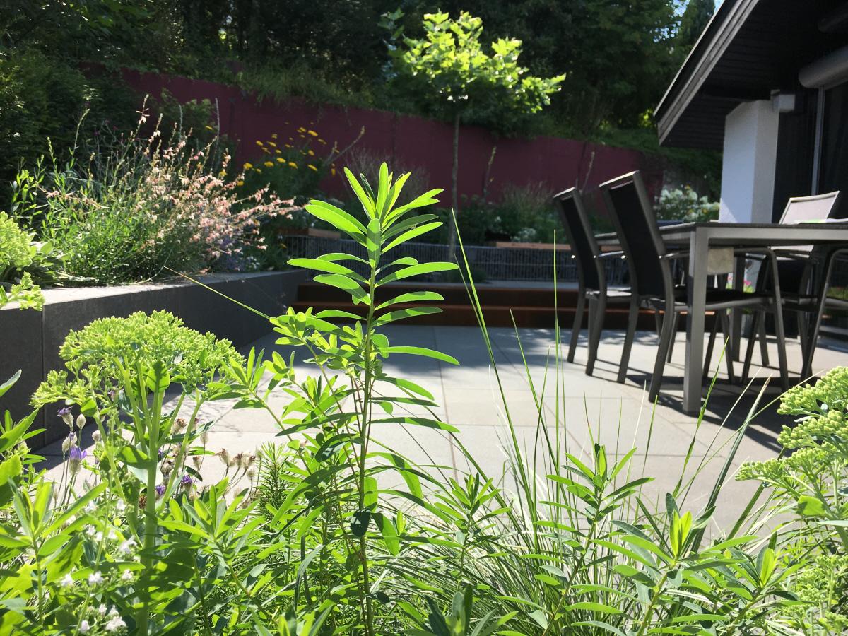 KLOTZ | Basaltgarten